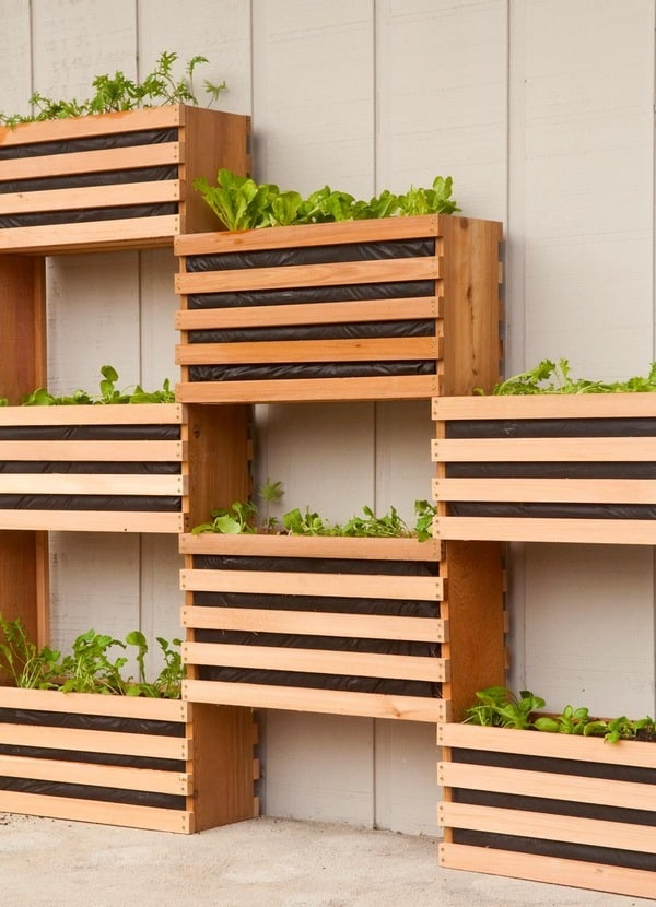 DIY modern vegetable garden
