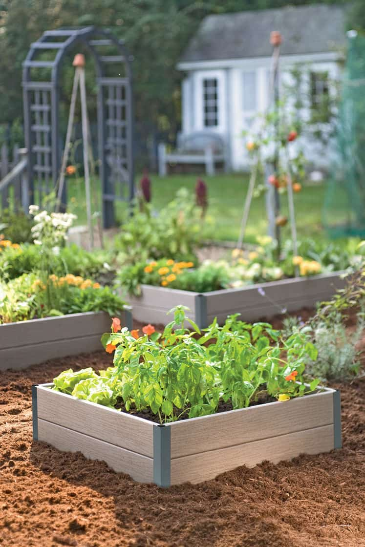 Forever Raised Beds & Best 20 Vegetable Garden Design Ideas for Green Living - MORFLORA Aboutintivar.Com
