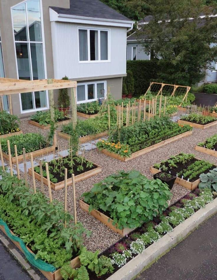 Best 20 vegetable garden design ideas for green living for Vegetable garden ideas