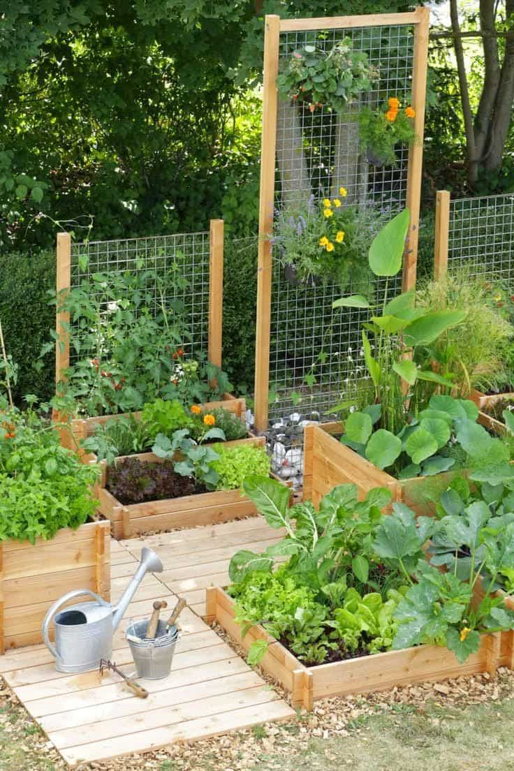 Best 20 vegetable garden design ideas for green living for Compact vegetable garden ideas
