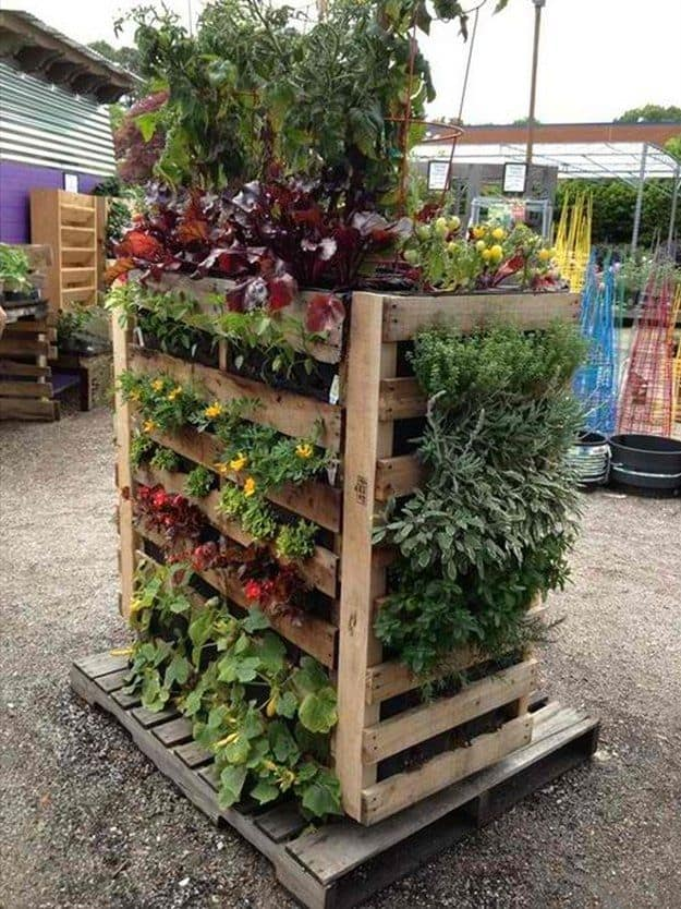 vertical pallet vegetable garden
