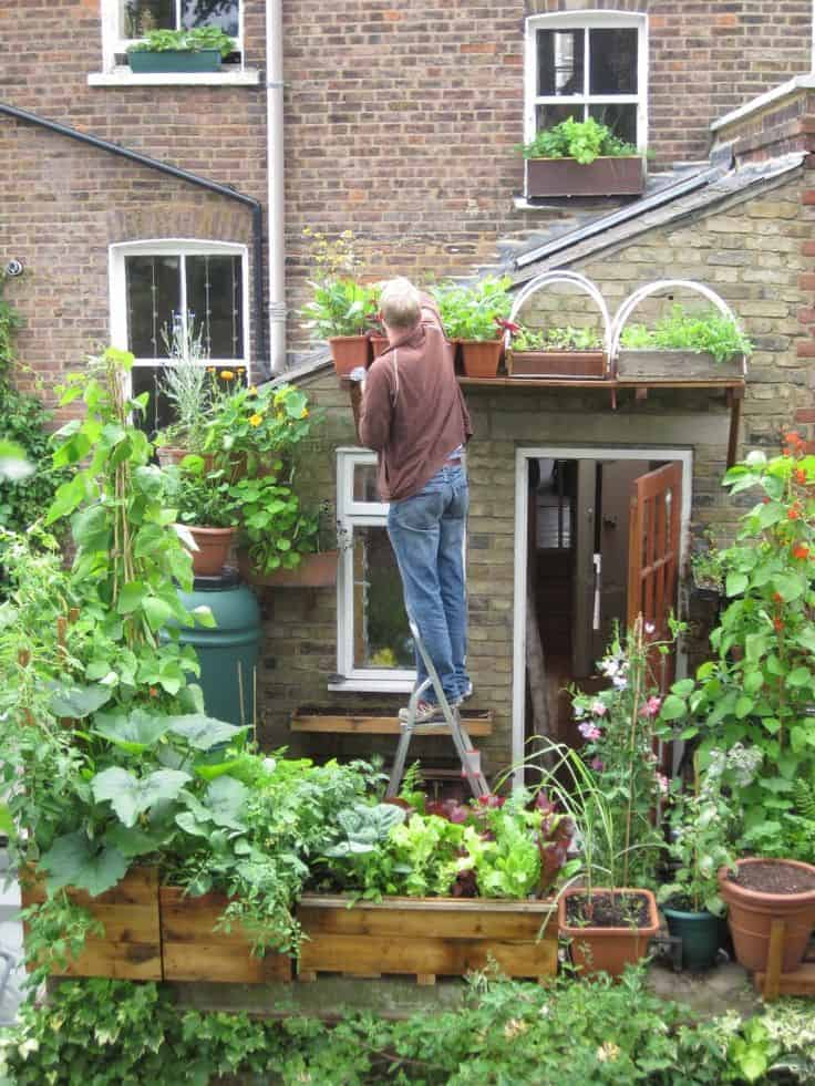vertical vegetable garden diy