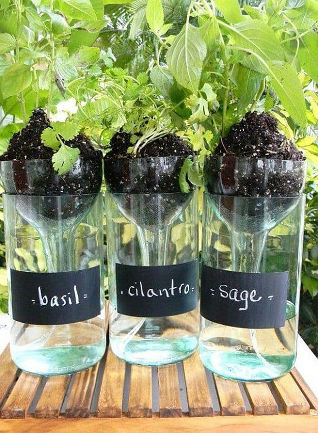 Cool DIY Self-watering Planter using a wine bottle