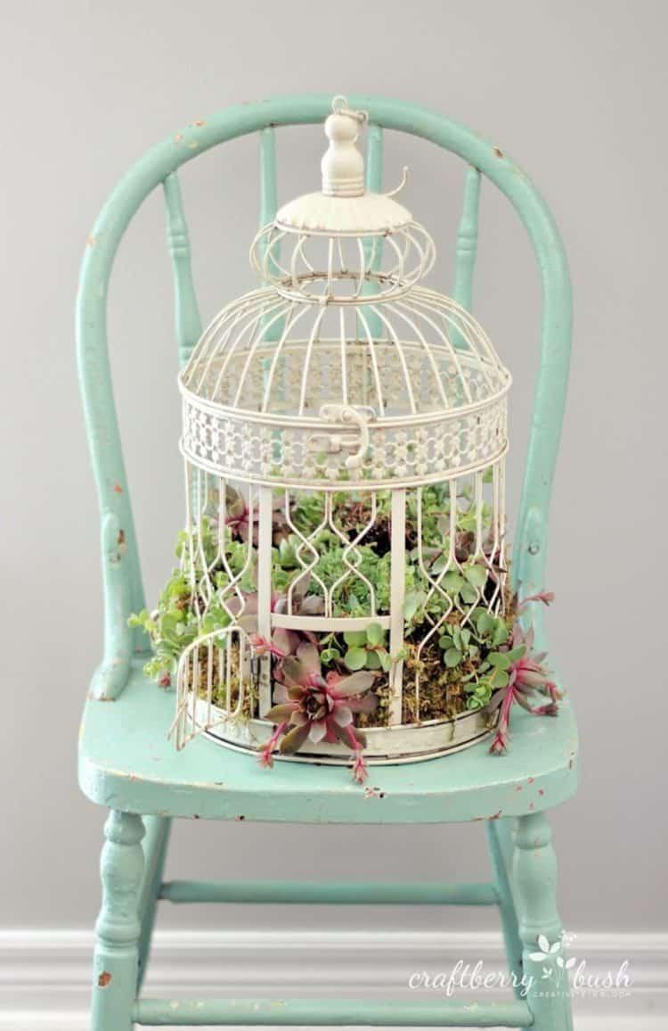 Birdcage diy succulent planter