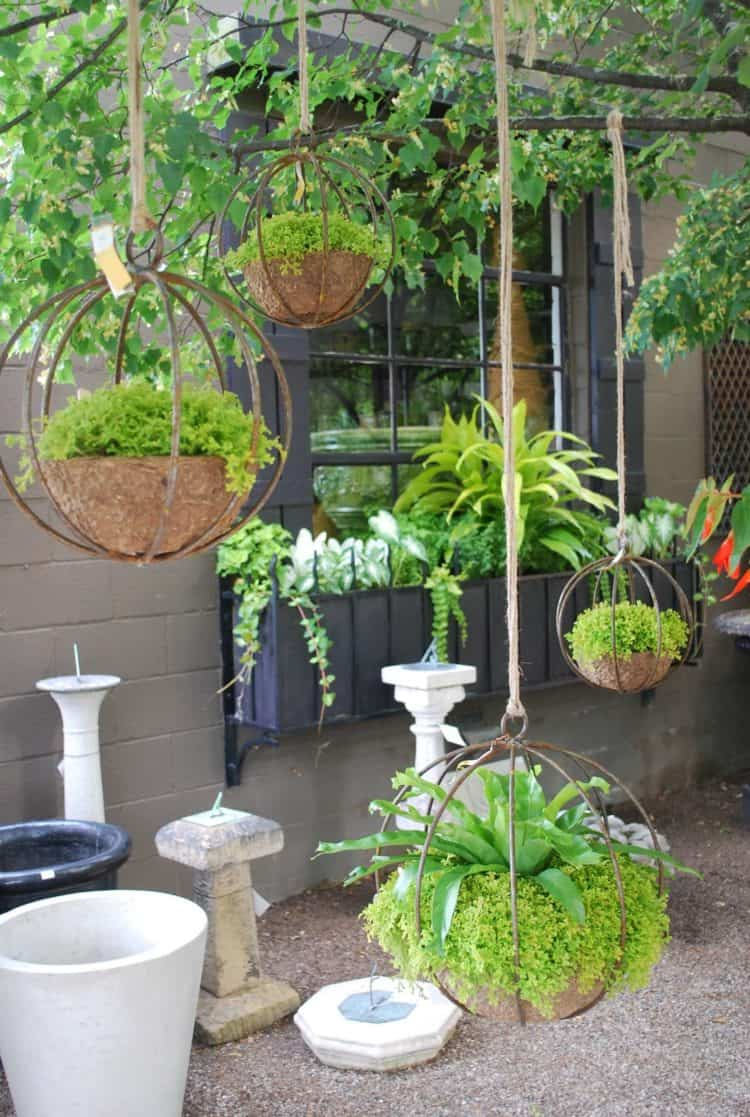 Chic Industrial Globe-Shaped Iron Hanging Planters ideas
