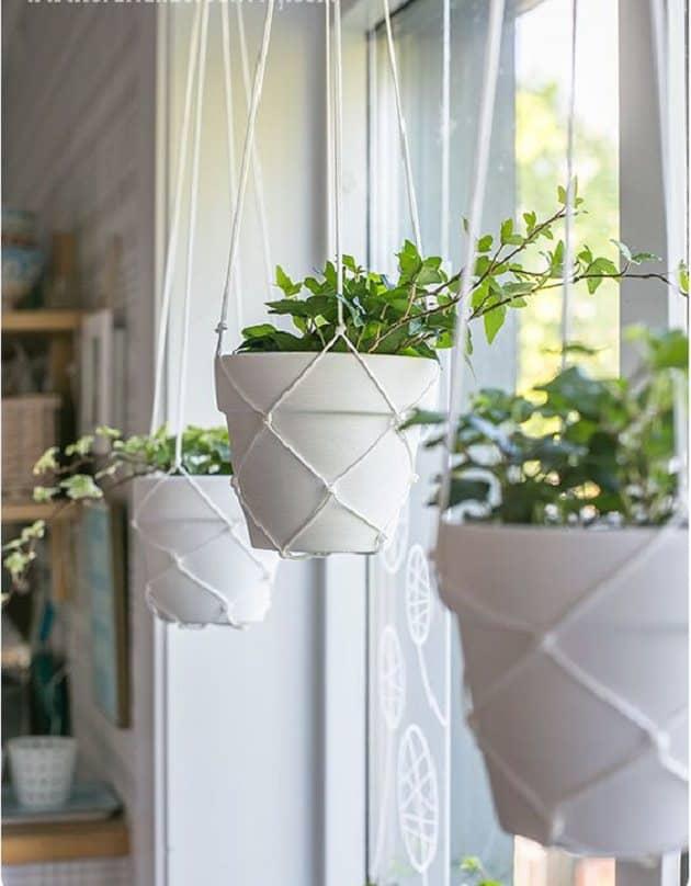 Creative Hanging Planter ideas