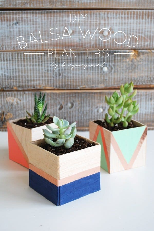 DIY Balsa Wood Succulent Planters