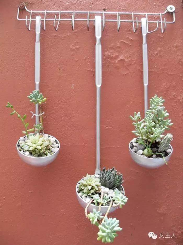 DIY Kitchen Utensil hanging Wall Planter for Succulents