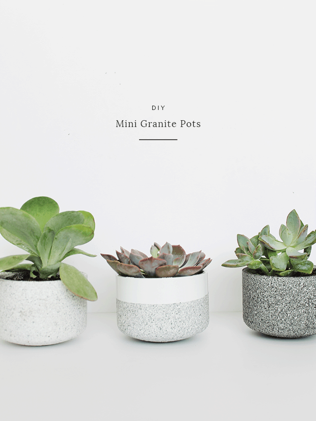 DIY Mini Granite Succulent Pots