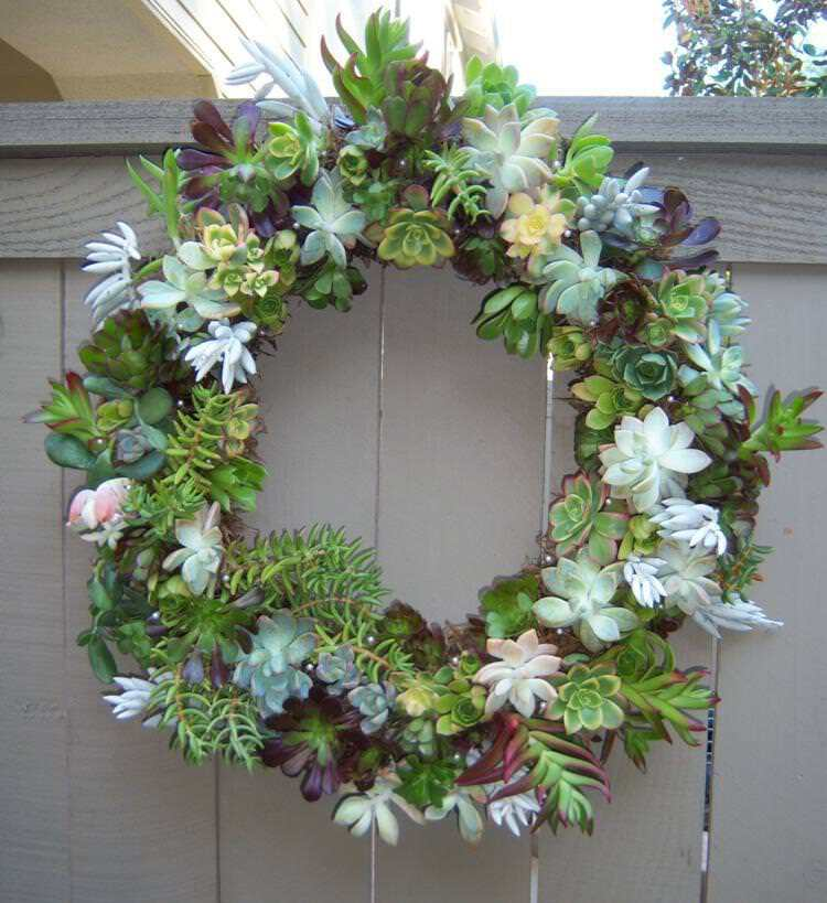 DIY Succulent Door Wreath