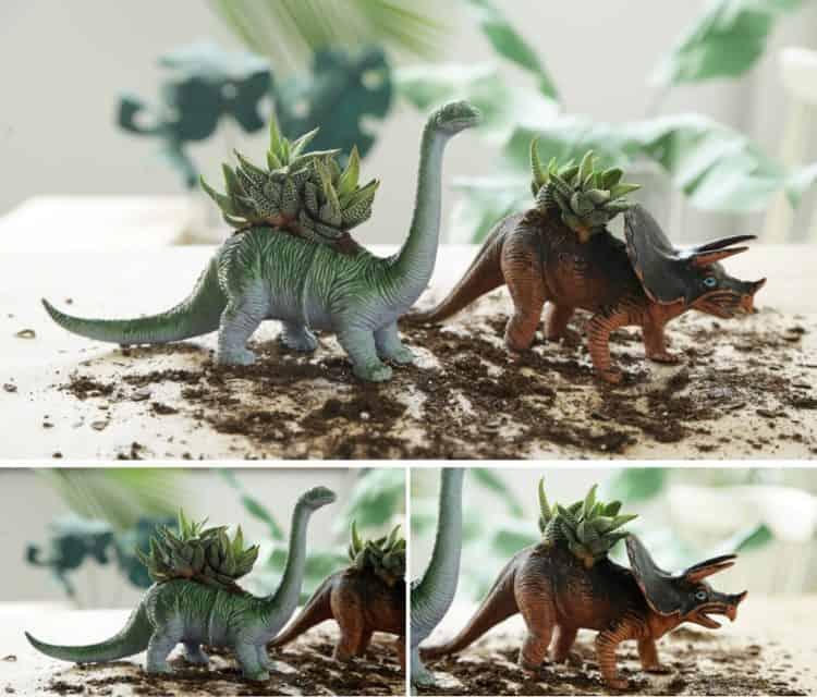 Dinosaur diy Succulent Planter