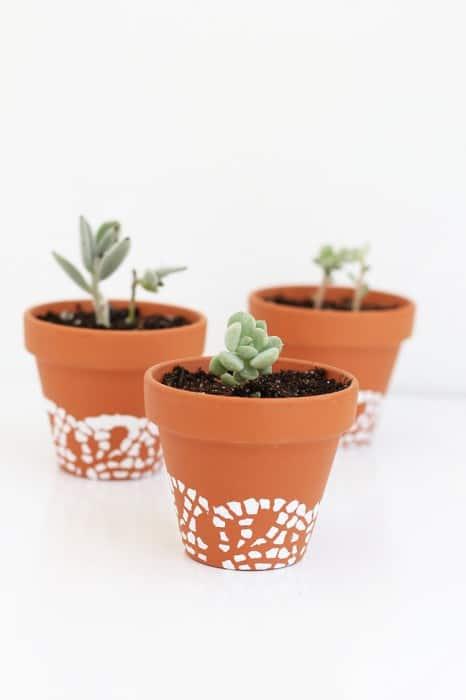 Doily Painted Pots diy succulent planters