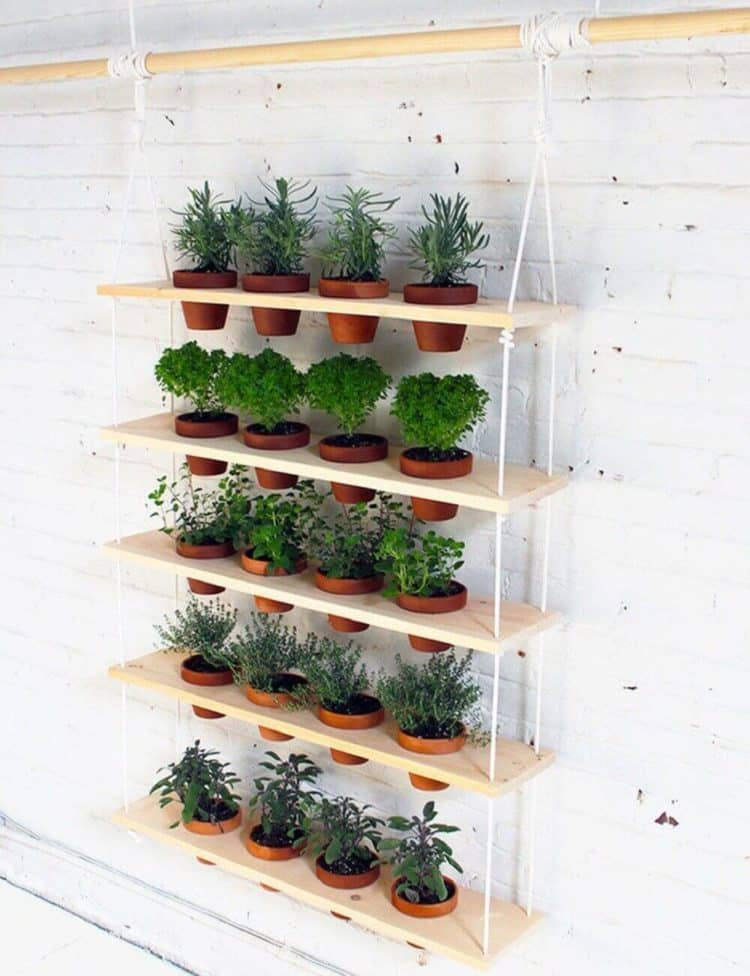 Easy to Make Hanging Herb Garden ideas
