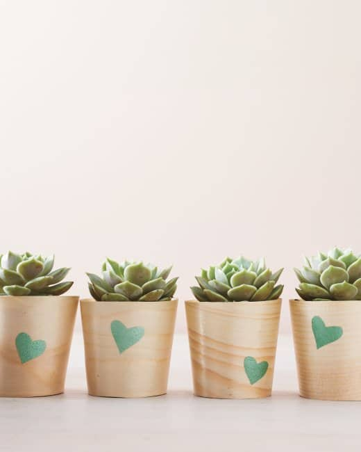 Heart Stenciled Wooden Cups diy succulent planter
