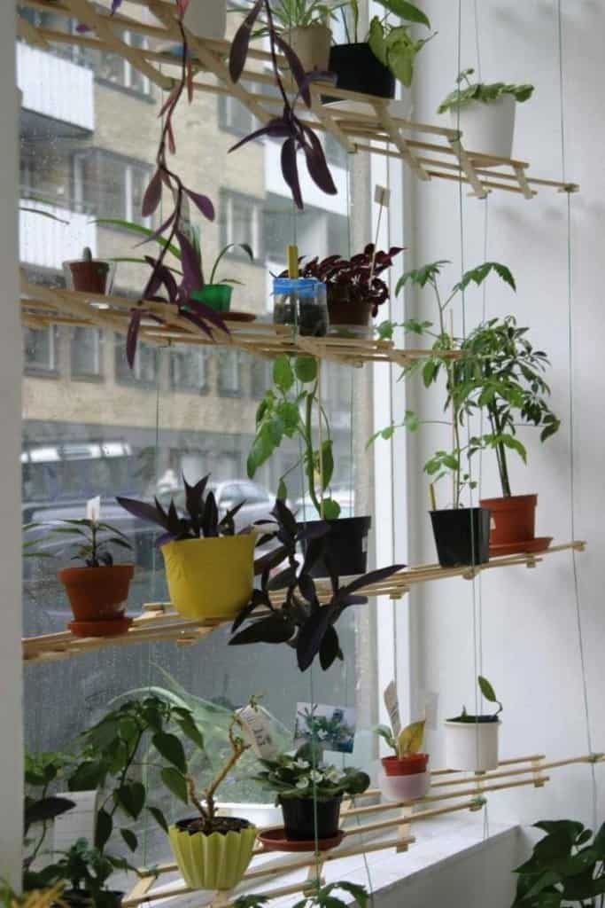 Lattice Shelves Hanging Planter ideas