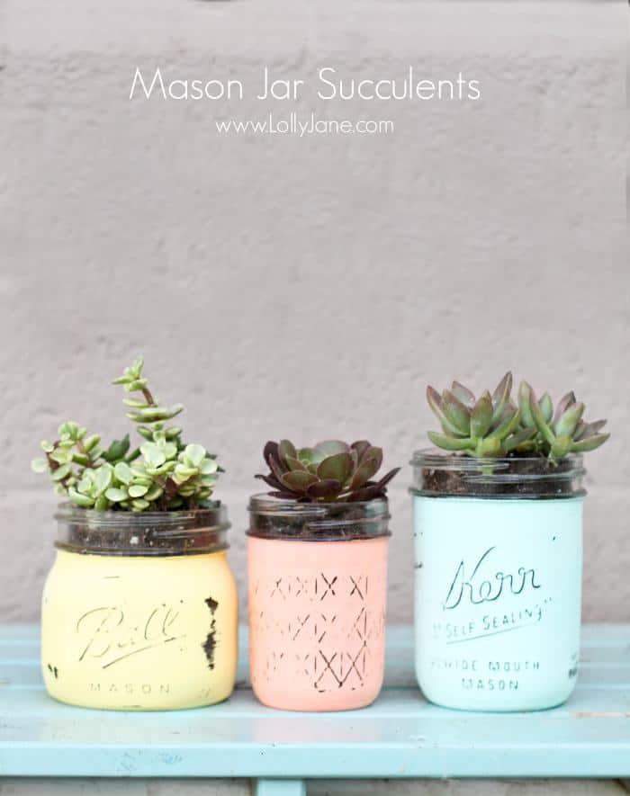 Mason Jar Succulent Pots