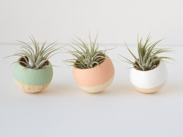 Painted Bell Cups diy succulent planter