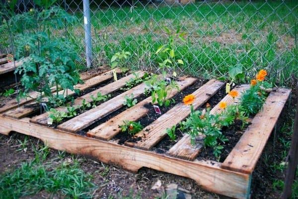 Pallet Planter Garden Bed