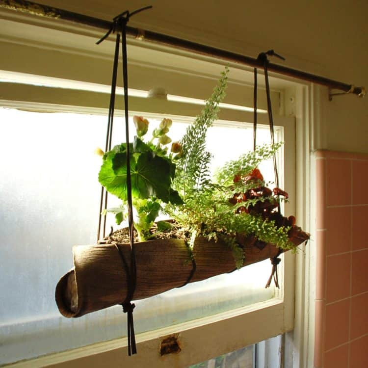 Palm Front Hanging Planter ideas