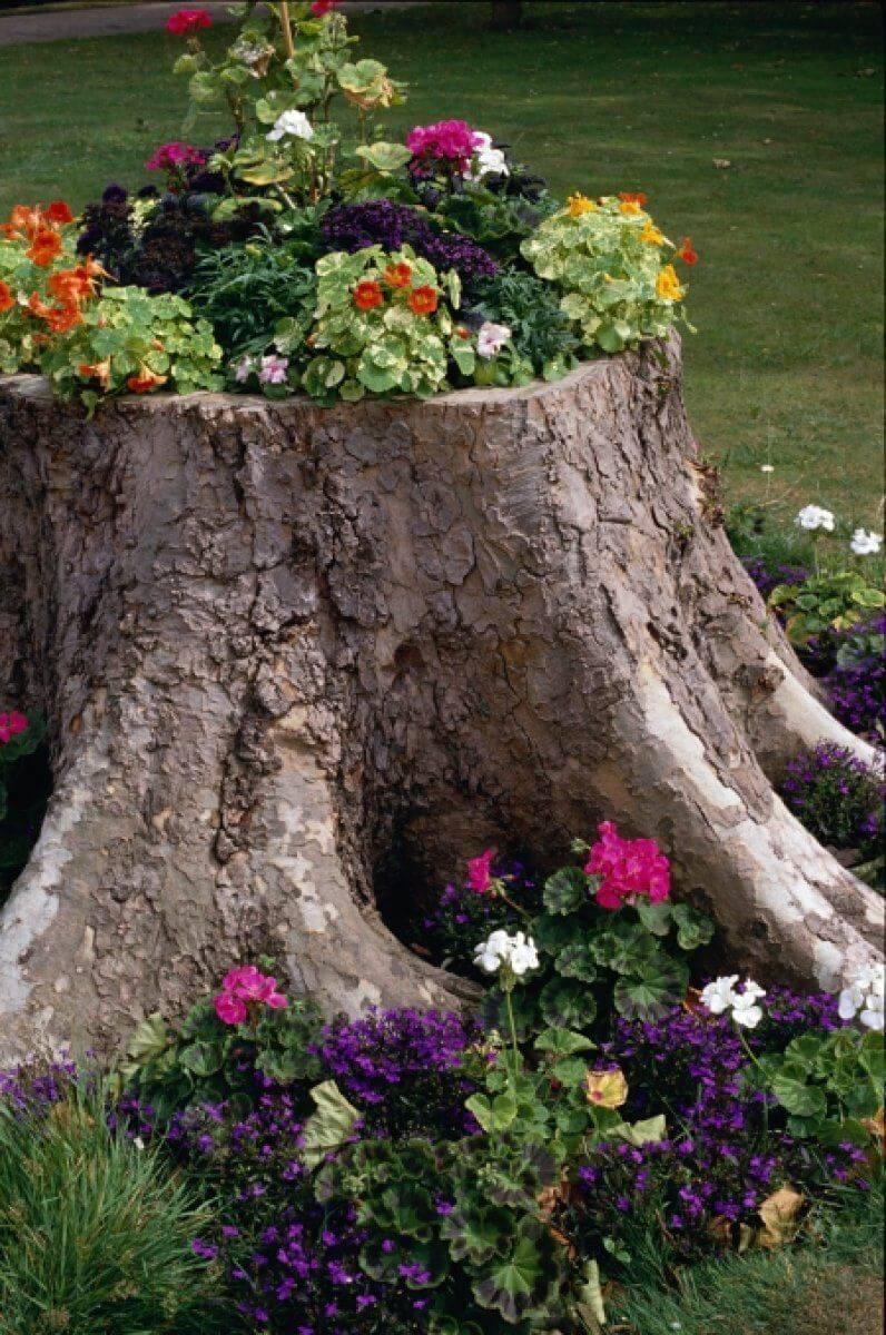 Pretty Repurposed Tree Stump Flower Bed