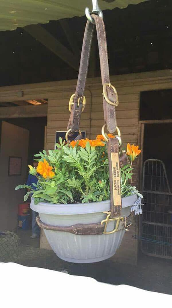Recycled Horse Bridle Hanging Pot Holder