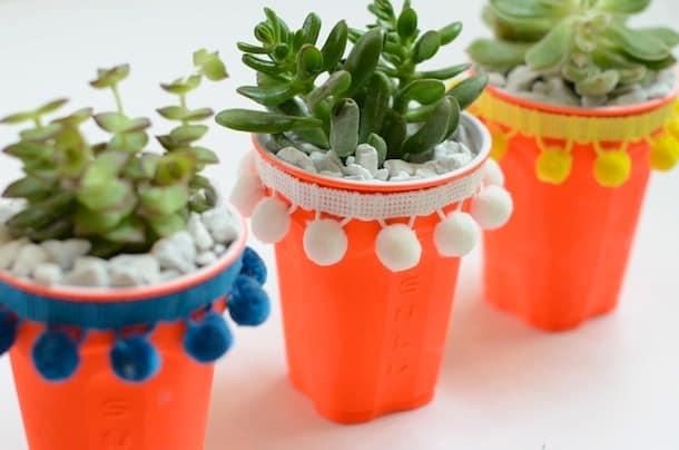 Solo Cup Succulents diy succulent planters