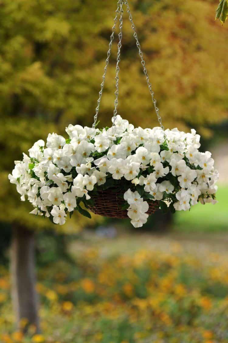 Sweetly Simple Woven Flower Basket ideas