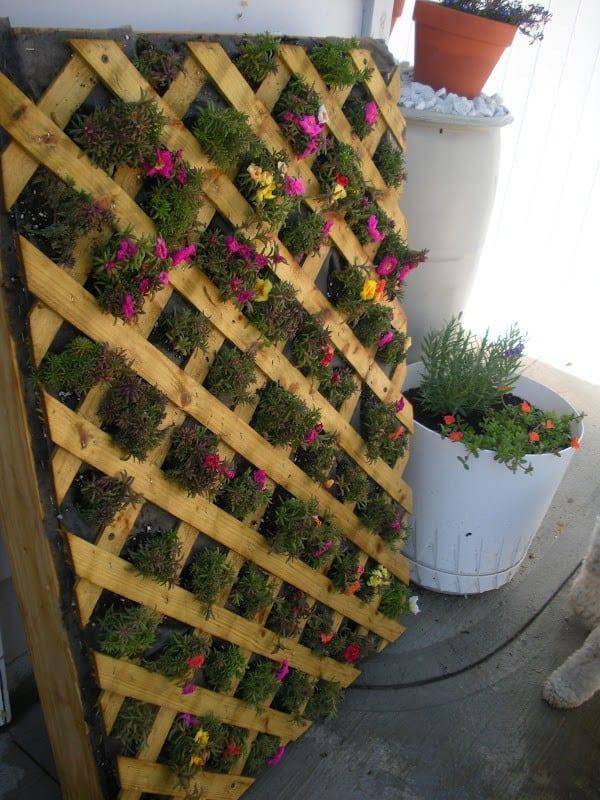 The Lattice Pallet Planter Garden PGI39