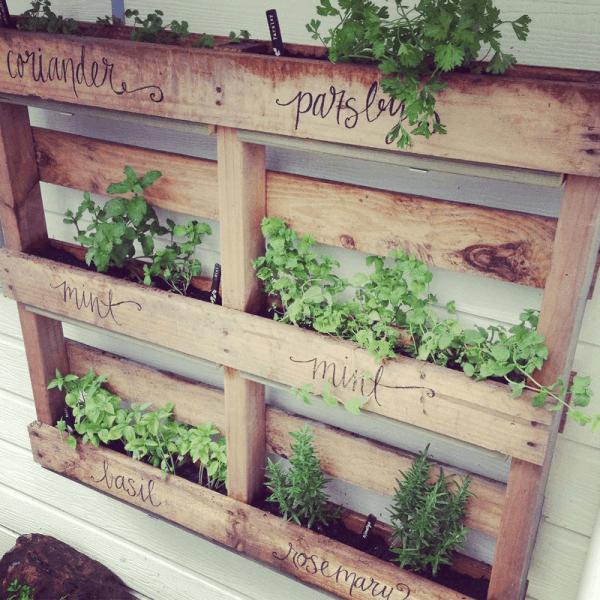 The Pallet Planter Herb Garden