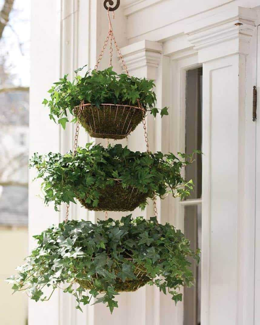 Three Tiered Hanging Ivy Baskets ideas