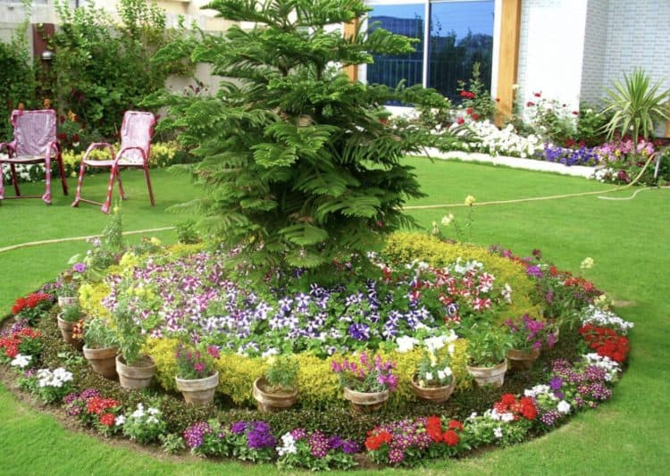 18 flower bed ideas to try for small budget morflora for Small flower bed ideas