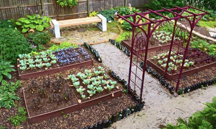 Best 20 Vegetable Garden Design Ideas