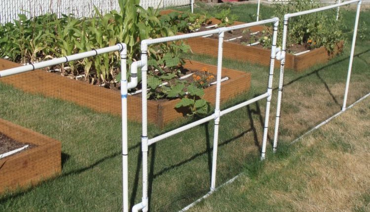 inexpensive diy garden fence ideas
