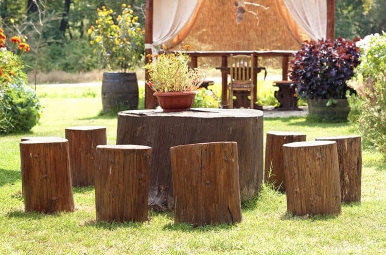 diy tree stump table ideas