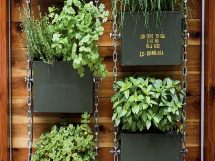 diy vertical garden ideas