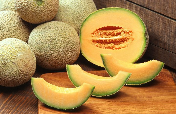 types of melon