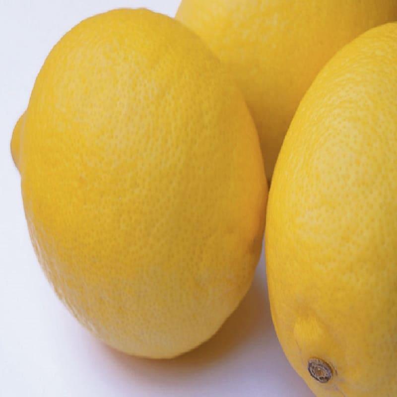 Fino Citron Lemons